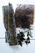 Various types of seaweed on a white surface