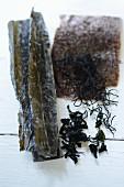 Verschiedene Algen auf weißem Untergrund