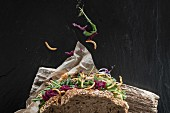 A wholemeal sandwich with vegetables and crispy meal worms