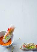 Vietnamese summer rolls with a pepper sauce (vegan)