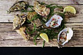 Marinated oysters with lemon and seaweed on wooden surface