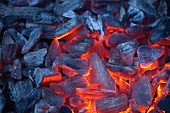 A grilling fire with glowing charcoal