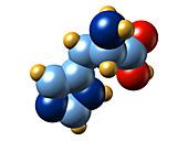 Histidine,molecular model
