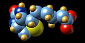 Vitamin B7,molecular model