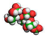 Amylose molecule