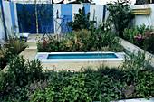 Wildlife Planting in a Modern Garden