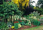 Border at a garden