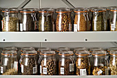 Seed bank seeds