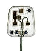 Transparent plug