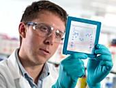 Electrophoresis gel analysis