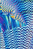 Vitamin B1 crystals,light micrograph