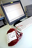 Donor blood database
