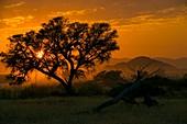Dawn over Namibian landscape