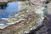 Polluted river,USA
