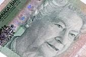 Twenty-dollar Canadian banknote