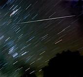 2009 Geminid meteor shower