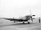 Supermarine Spitfire,1944