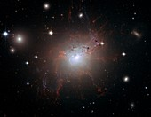Active galaxy NGC 1275,HST image