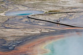 Grand Prismatic Spring,a hot springs