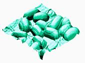 Atomic Force Microscopy,Bacillus cereus