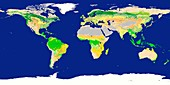 Earth's land cover classification,2003