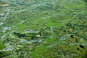 Okavango delta,Botswana,aerial view