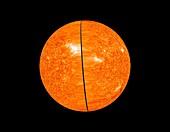 Entire Sun,STEREO image