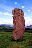 Standing stone in a field