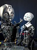 Humanoid social robots