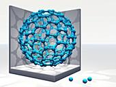 Fullerene molecule