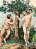 1863 Adam and Eve from zoology textbook