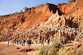 Sandstone erosion due to deforestation