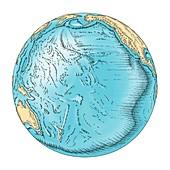 Pacific Ocean sea floor topography