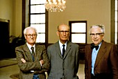 Amaldi,Rasetti and Segre,physicists