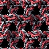 DNA crystal lattice