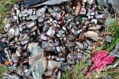 Dumped food waste