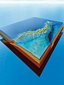 Japan's plate tectonics,artwork