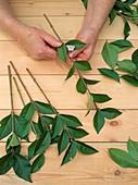Hardwood cuttings