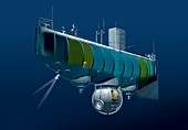 Trieste bathyscape,artwork