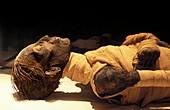Tuthmosis IV mummy,Egypt