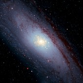 Andromeda Galaxy,composite image