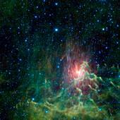 Flaming Star Nebula,infrared image