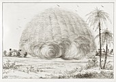 Developing sand storm,19th century
