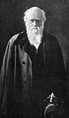 Charles Darwin,British naturalist