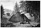 Charcoal production,19th century