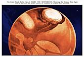 Schiaparelli's Mars,historical artwork