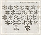 Snowflake research,18th century