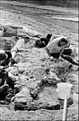 Baryonyx fossil excavation site,1983