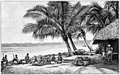 Coconut rope production,19th century