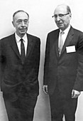 Breit and Wigner,US physicists